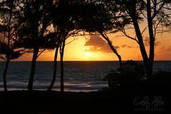 Hawaii sunrise...2007 (calba) Tags: sony hawaii oahu bellowsbeach sunrise ocean water nature landscape waterscape hawaiianbeach cathyalba cathyalbaphotography sun clouds silhouette