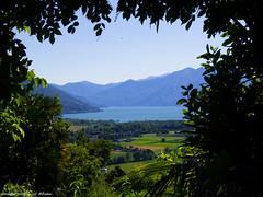 TICINO (somareja*pictures) Tags: tessin flickr natur ausblick lagomaggiore olympusem10 markusreber somarjapictures