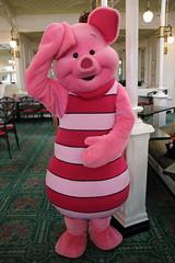 Piglet (sidonald) Tags: tokyo disney tokyodisneyland tdl tokyodisneyresort tdr greeting     piglet