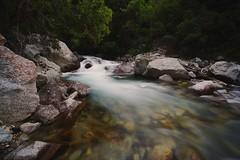make a wish (Alvin Harp) Tags: littlecottonwoodcanyon mountainstream stream creek le longexposure canyon trees naturesbeauty nature naturepix sonyilce7rm2 teamsony sonya7rii july 2016 fe41635zaoss alvinharp