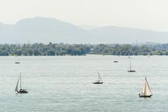 DSC_8599 (andreas_rothmund) Tags: bodensee bregenz lindaubodensee bayern deutschland de