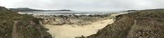 Panoramas/Carmel Middle Beach (LOLO Italiana) Tags: panoramas beach carmel ca sandylandscape landscape pacificocean pointlobosstatereserve horizonoverwater sea pathways nature ocean fog clouds