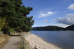 _DSC5576 (chicour) Tags: sony rx100 rx100m2 rx100ii allemagne germany t summer 2016 schluchsee