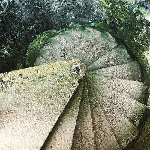 Spiral stairs where Dracula once tread, but now here I stand in his stead, tower high atop Aberdeenshire's coast, fall from here and you become a ghost 👻  #newslainscastle #dracula #bramstoker #crudenbay #aberdeenshire