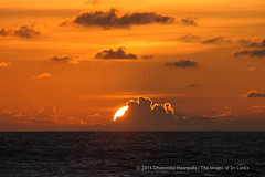 DSC_0037.jpg (Dhammika Heenpella / Images of Sri Lanka) Tags: sunset sun colour set asia hidden end srilanka dying setting cloudcover obscure lastmoment orangecolor weligama finalmoment dhammikaheenpella theimagesofsrilanka