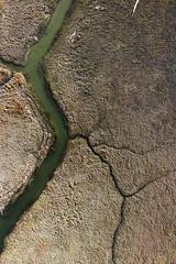 Salt Pond E2 - October 2014 (KAP Cris) Tags: california creek pond unitedstates control flood salt donedwards saltpond hayward kap alameda channel kiteaerialphotography saltponds levee e2 hiddenecologies southsanfranciscobay southbaysaltpondrestorationproject sbsprp