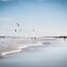 kitesurfing - playa del ingles - gran canaria