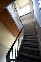 steps (na dine) Tags: abandoned germany steps treppe staircase stufen treppenhaus gladbeck treppenstufen derelicted schlgelundeisen