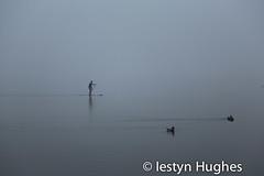 Niwl - y Bala -3530 (www.atgof.co) Tags: lake board paddle ducks sup bala llyn hwyaid bwrdd tegid rhwyfo