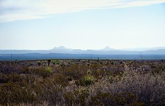 The Chihuahuan Desert and a View of the Sierra del Carmen in Mexico