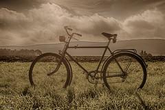 Wellerdiek (neun10sechsund70) Tags: bike deutschland alt oldtimer fahrrad niedersachsen nordstemmen wellerdiek