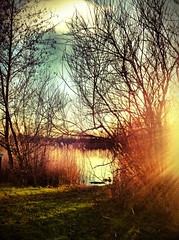 Bedfont Lakes Country Park (Andy Blackwell Photography) Tags: light london nature woodland landscape ray peace lakes calm serene healing hounslow sunray bedfont bedfontlakes
