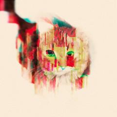 Cat Vine