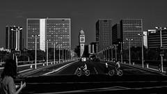 Paris  vlo (Pont Charles de Gaulle) (sviet73) Tags: city bridge paris bike architecture pont ville vlo greatphotographers greaterphotographers greatestphotographers ultimatephotographers skancheli