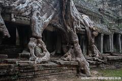 Angkor Wat (GuyBerresfordPhotography.co.uk) Tags: travel tree tourism window stone temple ruins asia cambodia southeastasia khmer buddhist ruin angkorwat tourist bark massive temples huge blocks root siemreap hindu tombraider impressive indianajones treeroots raidersofthelostark prakhan pragkhan