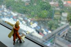 tintin at thamrin - rainy day (matamayke) Tags: rainyday snowy adventure tintin herge fujimoto fujixt1 fujimotret lovelyfuji