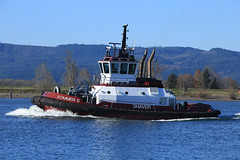 Shaver Transportation tug SOMMER S (Chuck Stephens) Tags: columbiariver tugboat tug tugs tugboats sommers vancouverwashington frenchmansbar shavertransportation pacificnorthwesttugs 367530080 theothervancouver columbiarivertugs