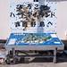 渡鹿野島 画像22