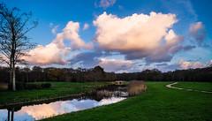 Mirror pond (Wouter de Bruijn) Tags: water grass clouds forest sunrise reflections mirror bluesky zeeland fujifilm walcheren oostkapelle xt1 fujinonxf14mmf28r mantelingen
