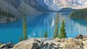 Moraine Lake Majesty (karma (Karen)) Tags: trees canada mountains topf25 reflections rocks shadows lakes pines alberta 4summer morainelake canadianrockies canadanationalparks bakffnp
