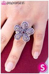 1057_ring-purplekit1april-box03