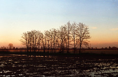 (Alessio Conti) Tags: winter sunset film 35mm country e zenit analogue expired fujicolor 100iso