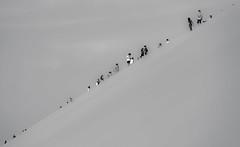DUNE WALK (CUMBUGO) Tags: sky people bw white black art brasil america sand nikon jericoacoara south dune monochrom nikkor f28 jeri d800 70200mm symetrie d800e