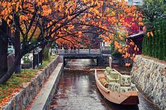 Takase River in Autumn () Tags: autumn japan kyoto takaseriver  olympusem5