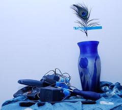 .  (nataliya_andreeva) Tags: blue feather peacock workshop vase unusualstilllife