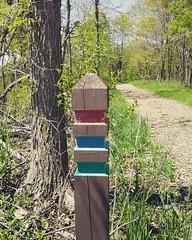 Path code (V and the Bats) Tags: wisconsin forest bicycling path waukesha pathmark tees foxrivertrail instagram pathcode pathcolorcode