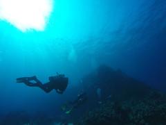 Barry and Sun (AZDropTop) Tags: scuba diving