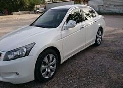 Honda - Accord - 2008  (saudi-top-cars) Tags: