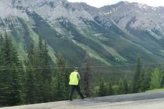 Radio Tracking a Bear (Downhillnut) Tags: mountains calgary race kananaskis longview relay nakiska 2016 crr 100miles relayteam 10runners calgaryroadrunners