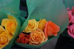 DSC04629 (Melissa808) Tags: searchhawaii newyork jonathanwaxman unionsquaregreenmarket