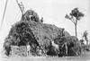 P-1-A-014 (neenahhistoricalsociety) Tags: horses wagons farmscenes