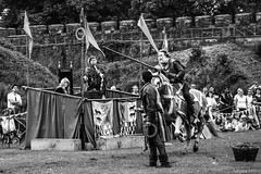Levioso Ringo (Adrian Milne) Tags: horses castle cardiff rings knight joust cardiffcastle