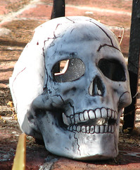 cheerful skull (lisafree54) Tags: eye halloween laughing skull free twinkle grin grinning cheerful cco freephotos