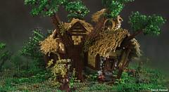 Rhosgobel (Radagasts house) (Legonardo Davidy) Tags: house lego earth middle hobbit thehobbit the moc radagast rhosgobel