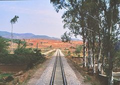 China - Yunnan - Along the line (railasia) Tags: china yunnan cnr metergauge infra alignment track landscapeview 2002