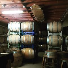 @kelseyseecanyon for some wine. #daydrinkingwithhenryandeva #winetasting #wine #vino #avilabeach #kelseyseecanyonvineyards #specialguests (O! Wretched Mortals) Tags: instagram iphone 6 iphoneography richj55