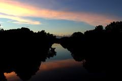 River's Reflection (AlanaLouiseBowmanPhotography) Tags: river clyde lanarkshire scotland sunset sillohuette
