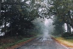 One Day We'll Find Our Way (davelawrence8) Tags: 5d 40mm 2015 autum fall fog foggy michigan pulaski rural vsco mi usa commute country road canon canon5d ruralamerica countryroad