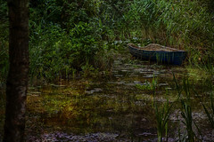 Deep in the forest (jacqaar) Tags: levenstuinen teuge groot honschoten boot boat forest bos