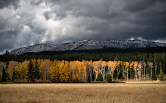 Approaching Storm (oshcan) Tags: wyoming autumn grandtetons aspens storm landscape nikon d4s
