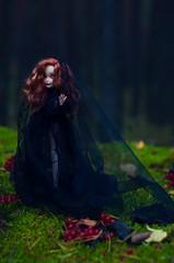 DSC_0890 (necofenix) Tags: ooak custom customdoll everafterhigh eah duchesswan zoi halloween witch