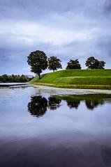 Four Trees // Kbenhavn (//Sebastian) Tags: four tree water levee bank cloud storm rain reflexion reflection grass green blue violet calm danmark denmark copenhagen cold kastellet