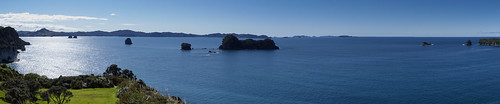 coastline at hahei near cathedral cove, coromandel peninsula, north island nz