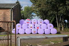 19th September 2016 (lucyphotography) Tags: hay bales with faces lol bags purple farm funny