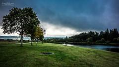 Tout le monde en rang ! (Jean McLane) Tags: trees nature landscape paysage paisaje france green cloudy clouds nuages nubes darksky rainy