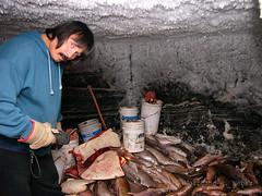 L1040852 (wolfgang.r.weber) Tags: canada nwt tuktoyaktuk permafrost